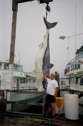 Montauk for Montauk shark fishing