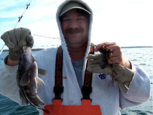 Blackfish for Frances fleet fishing